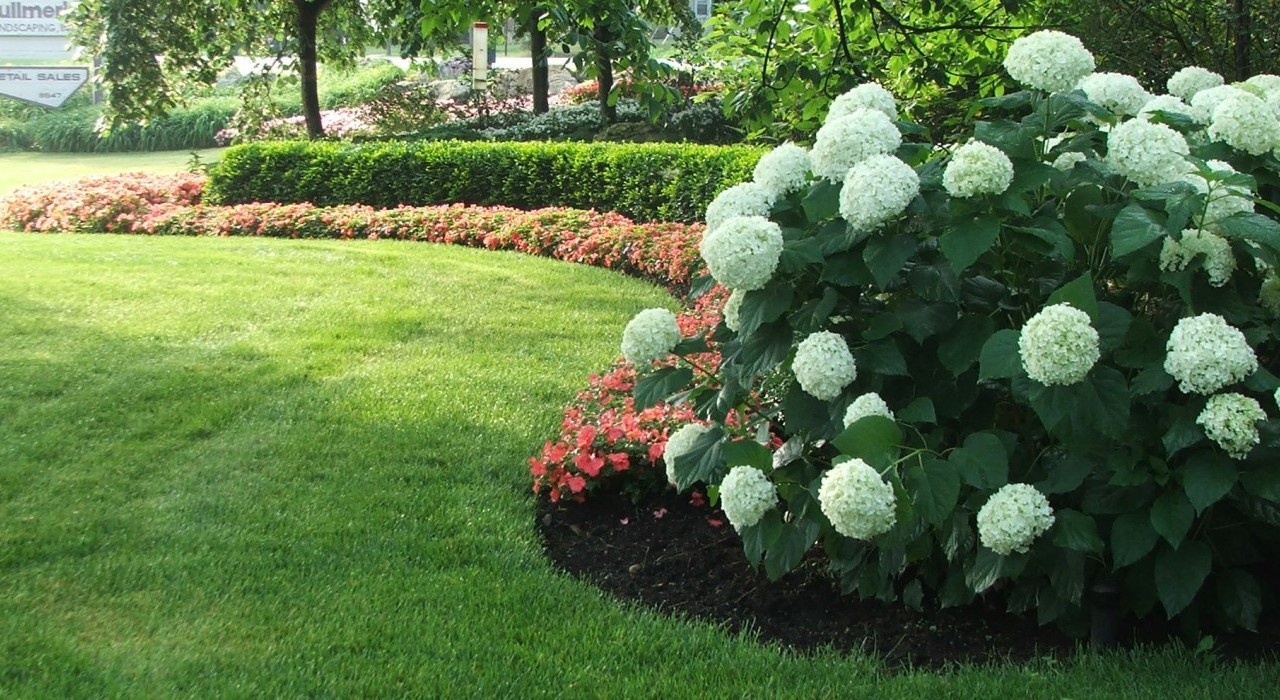 Three Steps to a Well-Manicured Lawn